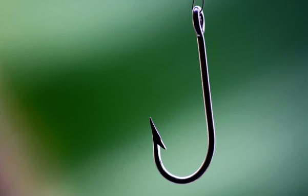 Fish-hook-e1476671028826