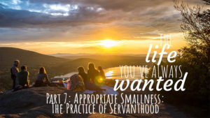 The LIFE You've Always Wanted - Part 7 - Appropriate Smallness