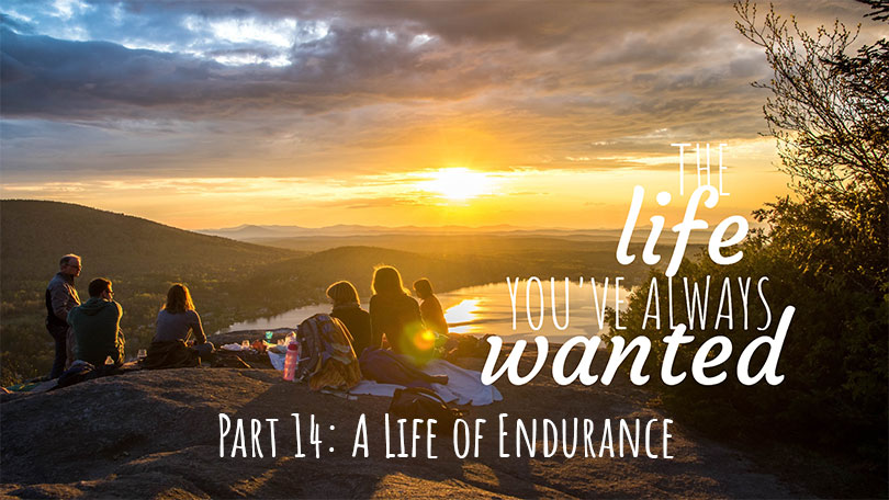 The LIFE You've Always Wanted - Part 14 - A Life of Endurance